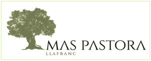 Hotel Mas Pastora